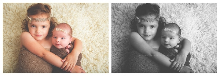 Laingsburg MI Newborn Photographer